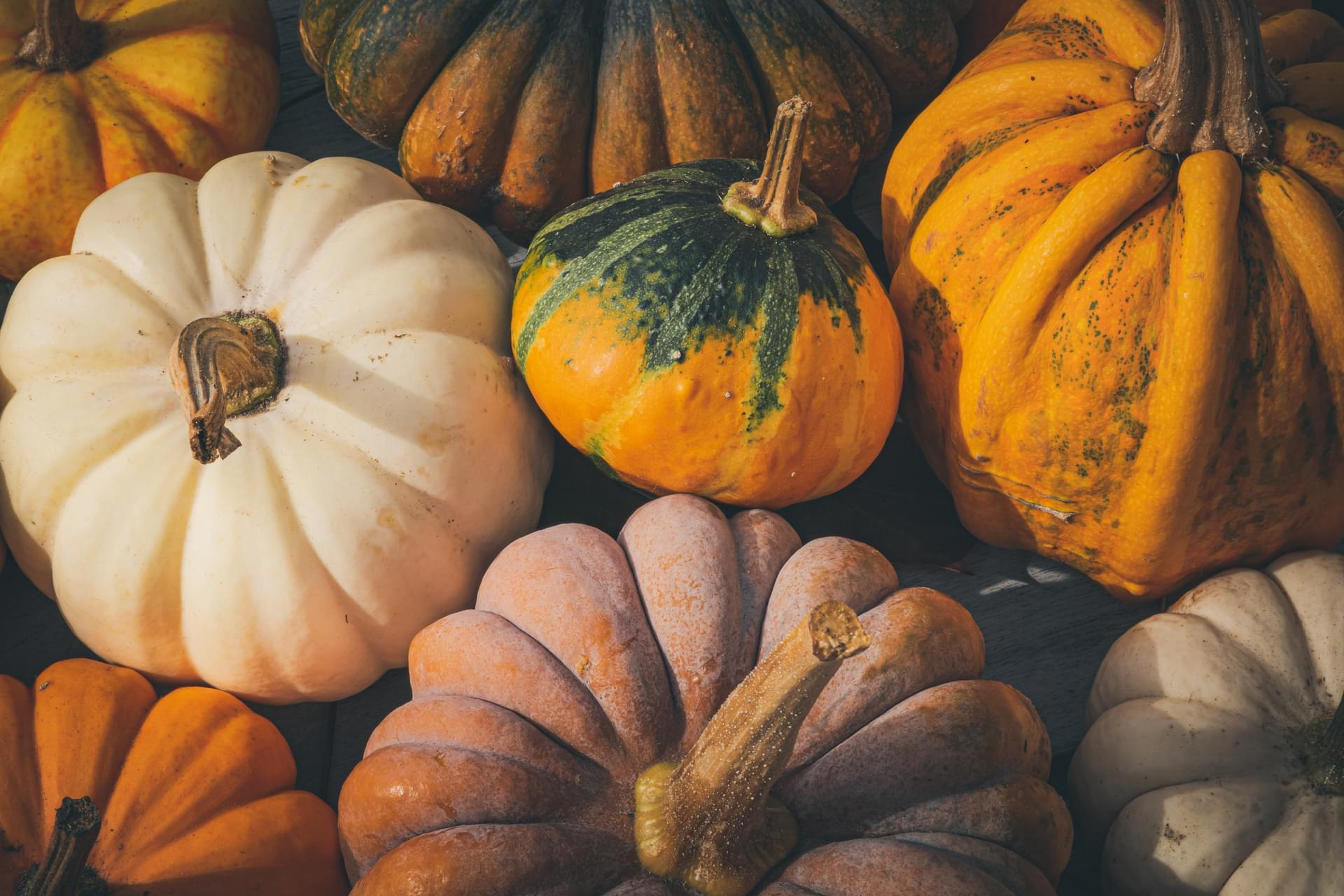 Getting Your Home Ready for the Fall Season